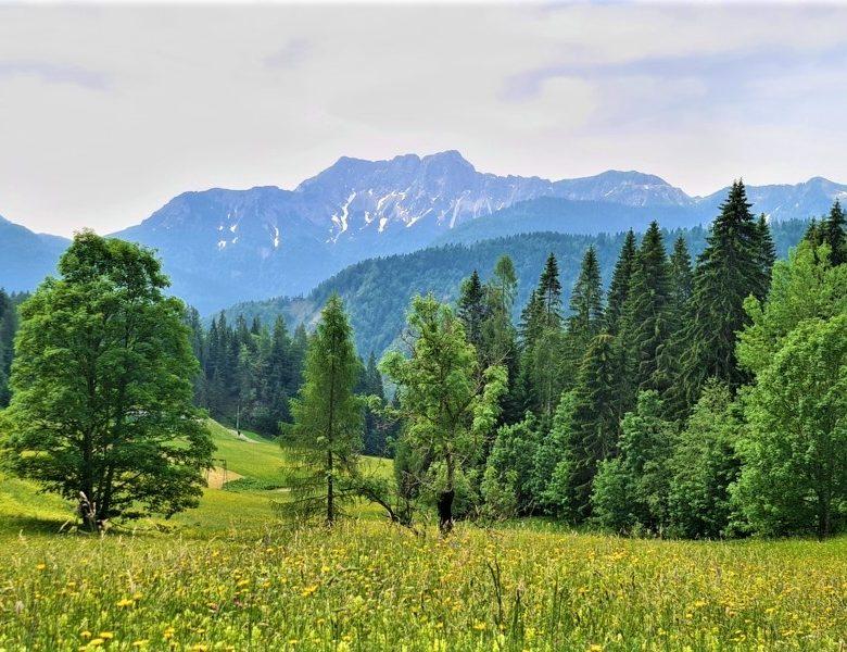 Vacanza in Friuli Venezia Giulia in camper